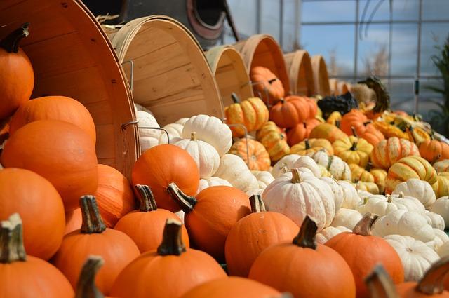 Cozy Interior Decorating for Fall | Interior Design Dallas | Barbara Gilbert Interiors